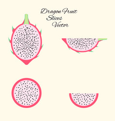pitahaya exotic fruit set in flat style isolated vector image vector image