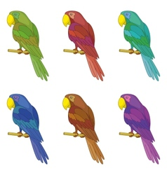 Parrots on a pole set vector