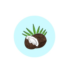 Icon colorful coconut vector