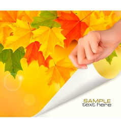 autumn background with hand vector image vector image