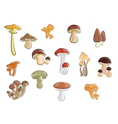 Collection of cartoon mushrooms and fungus vector