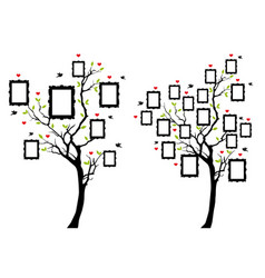 Family tree with photo frames family tree with vector