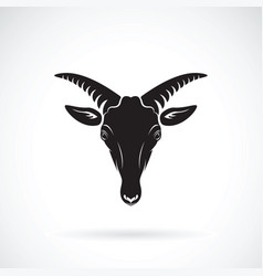 Goats mountain head on white background wild vector