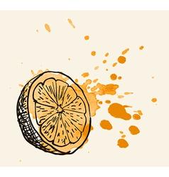 Artistic orange sketch vector