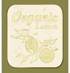 Lemon label vector