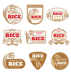 Paddy rice labels organic natural product vector