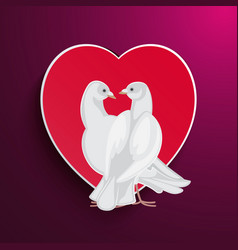 White pigeons couple looks at each other and heart vector