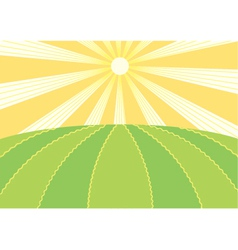 Summer field vector