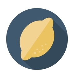 Lemon flat icon with long shadow vector