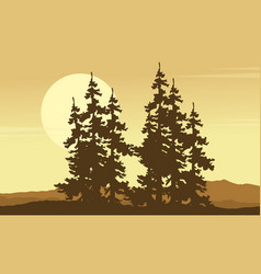 Collection of spruce forest scenery silhouette vector