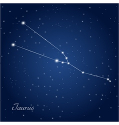 Taurus constellation zodiac vector
