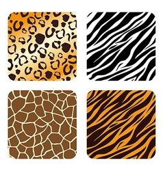 Animal prints design vector image