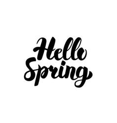 hello spring handwritten calligraphy vector image