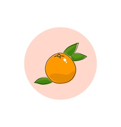 Icon colorful grapefruit vector