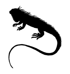 Iguana silhouette vector image vector image