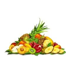 Tropical fruits set still life vector