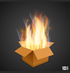 Box of fire vector