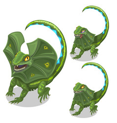 Frill-neck lizard smiling and tired animal vector