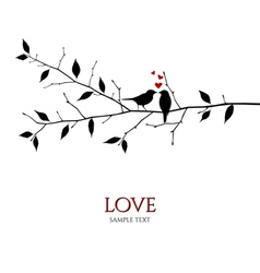 Bird couple on tree branch - love concept vector