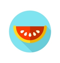 Watermelon slice flat icon with long shadow vector
