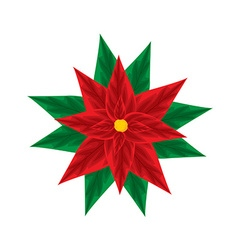 Christmas poinsettia vector