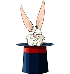 rabbit in the hat vector image