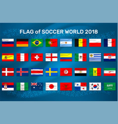 flag of soccer world vector image