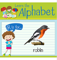 Flashcard letter R is for robin vector image