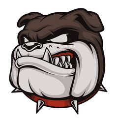 Head of angry bulldog vector