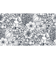 seamless pattern with hand drawn spring flowers vector image