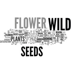 Why begin with wild flower seeds text word cloud vector