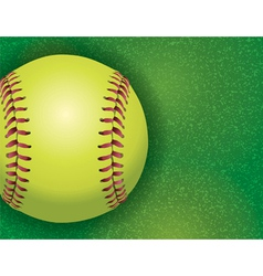 Softball on grass textured field vector