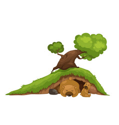 bear sleeping in cave vector image