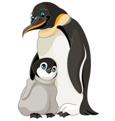 Emperor Penguin With Chick vector image vector image