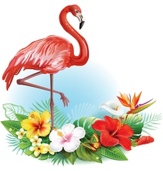 Arrangement from tropical flowers and flamingo vector