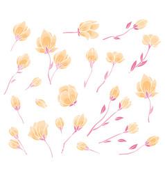 Pink sakura blossom vector