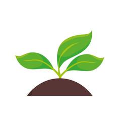 Plants land ecology vector
