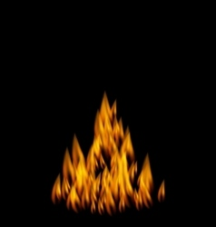 Realistic Fire Flame on Black Background vector image