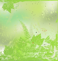 Plants and leaves background vector image