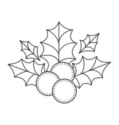 Holly berry christmas decoration vector