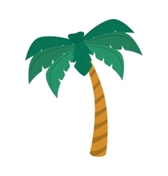 Palm summer beach icon graphic vector