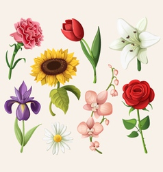 Set of romantic summer flowers vector