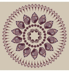 Mandala made of seashells vector