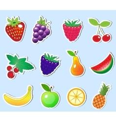 Cute cartoon fruit sticker set vector