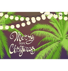 Original christmas palm trees vector