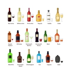 Set of different alcohol drink bottles vector