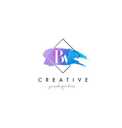 Bv artistic watercolor letter brush logo vector