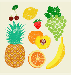 collection of retro fruits vector image vector image