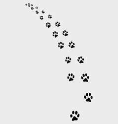 Trail of cat 2 vector