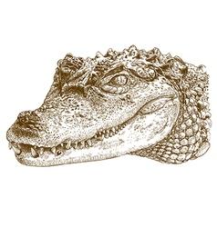 Etching crocodile head vector